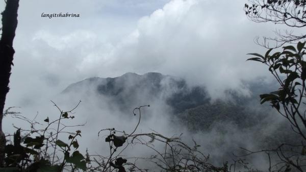 kabut tipis naik