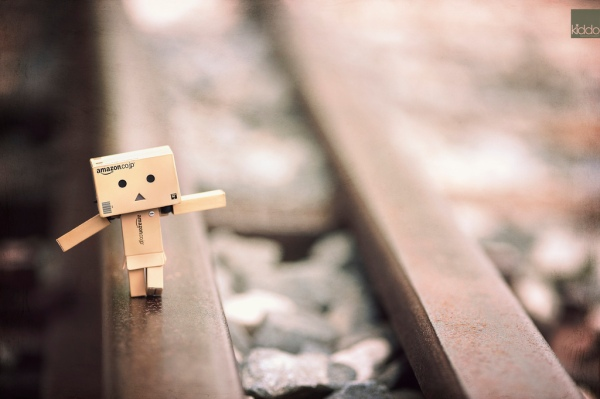 danbo keep moving